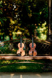 Violin music instrument of orchestra. Violins in the park on the bench Royalty Free Stock Photo