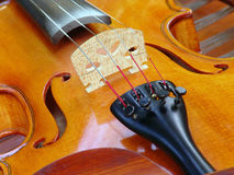 Violin music instrument Stock Images