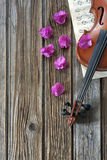 Violin on music paper Royalty Free Stock Photo