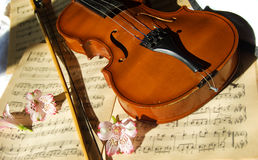 Violin on music sheet Royalty Free Stock Image