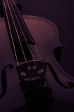 Violin musical instruments of orchestra closeup on black Royalty Free Stock Photos