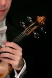 Violin musician. On black Stock Photo