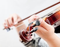 Violin. Musician playing violin  on white Royalty Free Stock Image