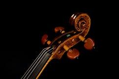 Violin nek close up Royalty Free Stock Photo