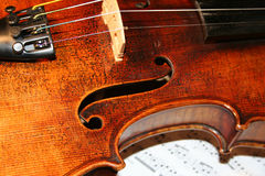 Violin on the notes Royalty Free Stock Image