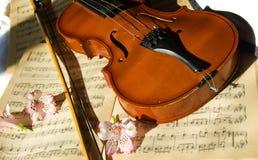 Violin On Music Sheet Royalty Free Stock Image