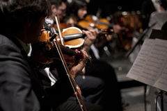 Violin Orchestra at the Vienna Ball Stock Photography