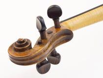 Violin peg box Stock Image