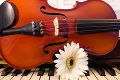 Violin, Piano, and a White Flower Stock Photos