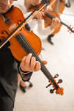 Violin players performing Stock Photo