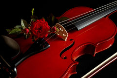 Violin with red rose royalty free stock photo