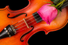 Violin and red rose on black background. Stock Photo