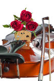 Violin and red roses. Violin and three red roses on white background Stock Images