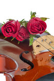 Violin and red roses. With water drop on white background Royalty Free Stock Images