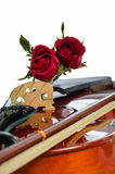 Violin and red roses. On white background Royalty Free Stock Image
