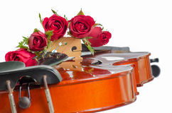 Violin and red roses Royalty Free Stock Images