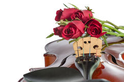 Violin and red roses. On white background Stock Photography