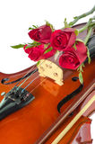 Violin and red roses Stock Image