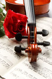 Violin and rose Stock Photo