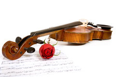 Violin, rose and music Royalty Free Stock Images