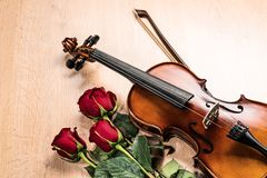Violin, rose and music books Royalty Free Stock Images