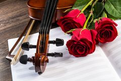 Violin, rose and music books Stock Photo