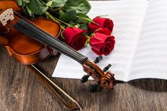 Violin, rose and music books Stock Images