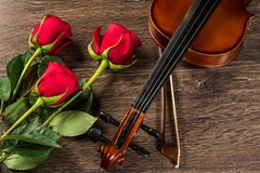 Violin, rose and music books. Still life Stock Image