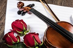 Violin, rose and music books. Still life Royalty Free Stock Images