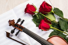 Violin, rose and music books Stock Photography
