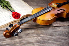 The violin and rose on musical notes Royalty Free Stock Photos