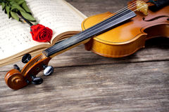 The violin and rose on musical notes Stock Photos
