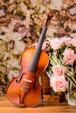 Violin and rose Stock Image