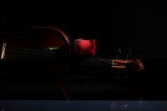 Violin and rose, Violin orchestra musical instruments Stock Photo