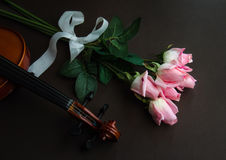Violin and roses Stock Photo