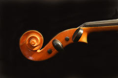 Violin scroll Royalty Free Stock Images
