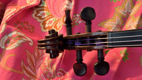 Violin scroll on pink, letterbox Royalty Free Stock Photos