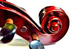Violin scroll in vivid colors Stock Image
