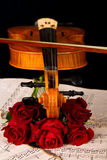 Violin sheet music and rose closeup still life Royalty Free Stock Image