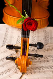Violin sheet music and rose Stock Photo