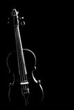Violin silhouette strings isolated. On black background. Musical instruments of orchestra in darkness stock photo