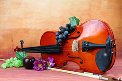 Violin. A still life of a violin, grapes and flowers, selective focus Royalty Free Stock Photos