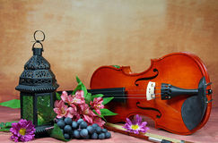 Violin. A still life of a lantern and a violin, grapes and flowers, selective focus Royalty Free Stock Photo