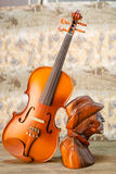 Violin - still life Stock Photos