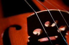 Violin strings Royalty Free Stock Images