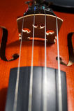 Violin strings Stock Image