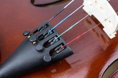 Violin strings close up Royalty Free Stock Photo