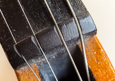 Violin Strings Stock Photo
