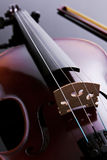 Violin. Studio photo. Stock Image