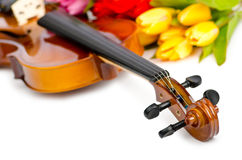 Violin and tulip flowers Royalty Free Stock Photography